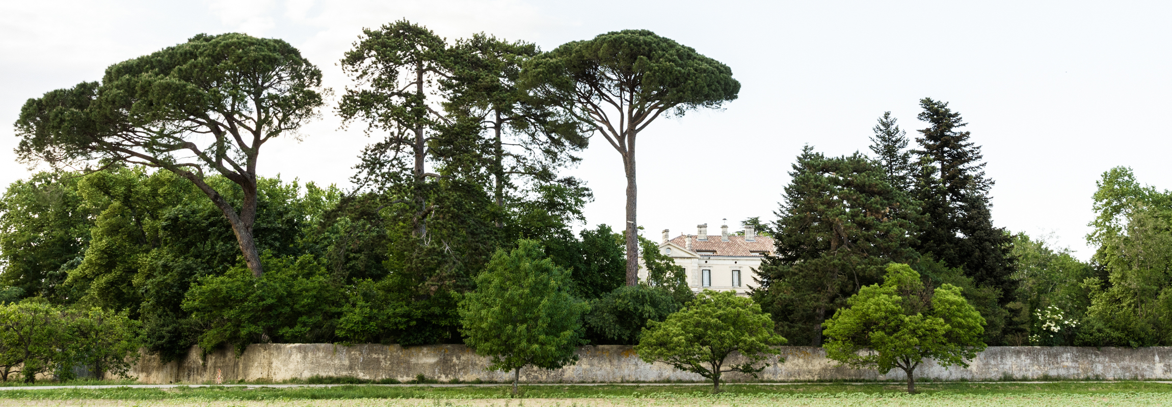 The picture shows the first view one has of hotel Chateau de Montcaud, from the direction of Bagnol-sur-Cèze. Located in Provence, in the south of France, the chateau hotel is surrounded by a magnificent park with centuries-old trees and a historical wall.