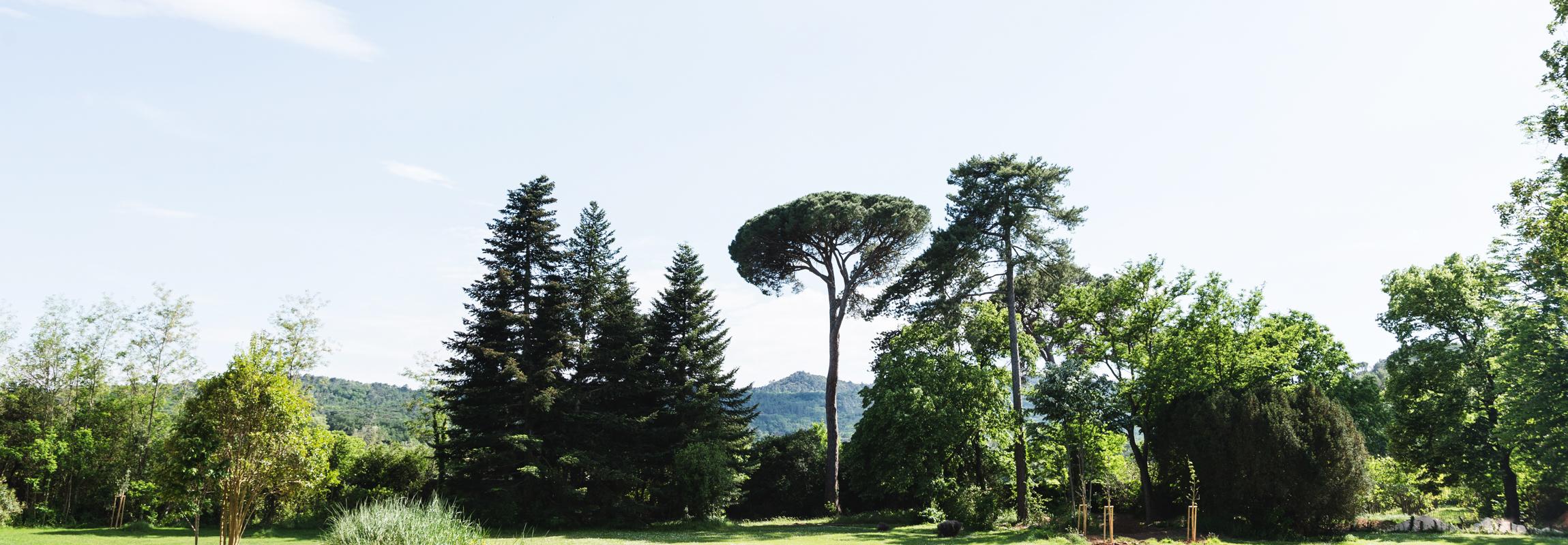 Alte und neue Bäume bilden das Inventar eines magischen Ortes - dem Schlosspark des Hotel Château de Montcaud, Provence, Südfrankreich.