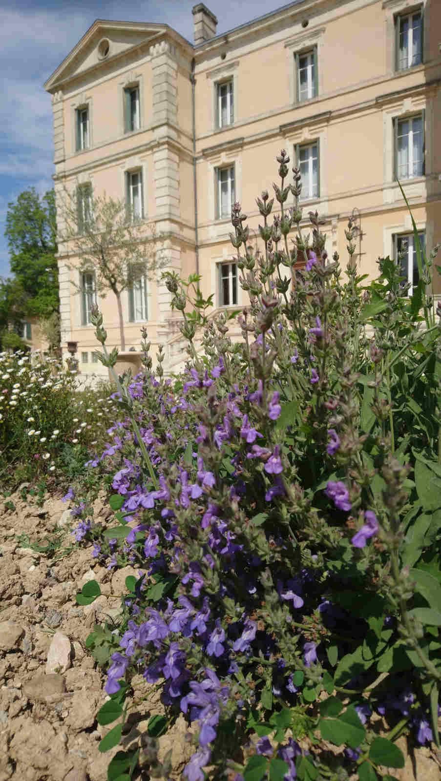 Park Hotel Provence